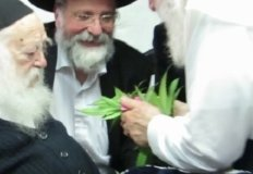 Cannabis in Judaism